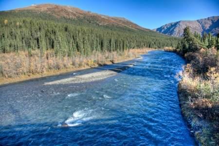 Upper Teklanika / Sanctuary River - Look for Dall Sheep & Bears (Mile 22)