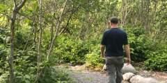 Whittier Creek Trail