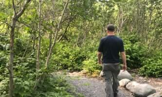 Whittier Creek Trail copy alaska whittier