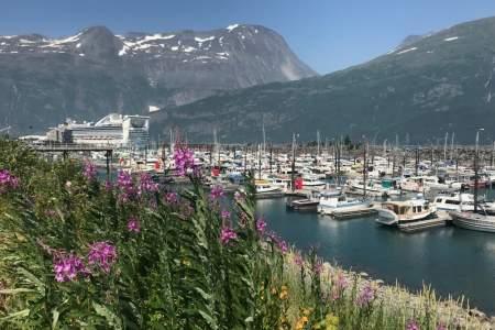 Whittier Harbor Cruise Ship anna dave disckason alaska whittier trip ideas