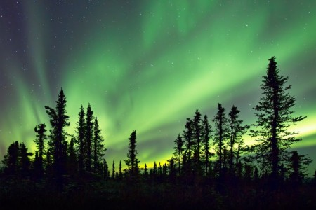 Fairbanks northern lights jeffrey cobble