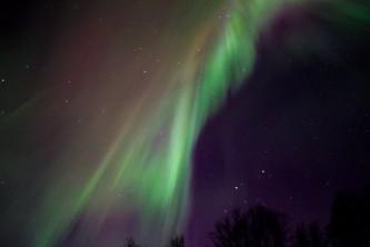 Northern lights fairbanks northern lights alora kovtynovich2019